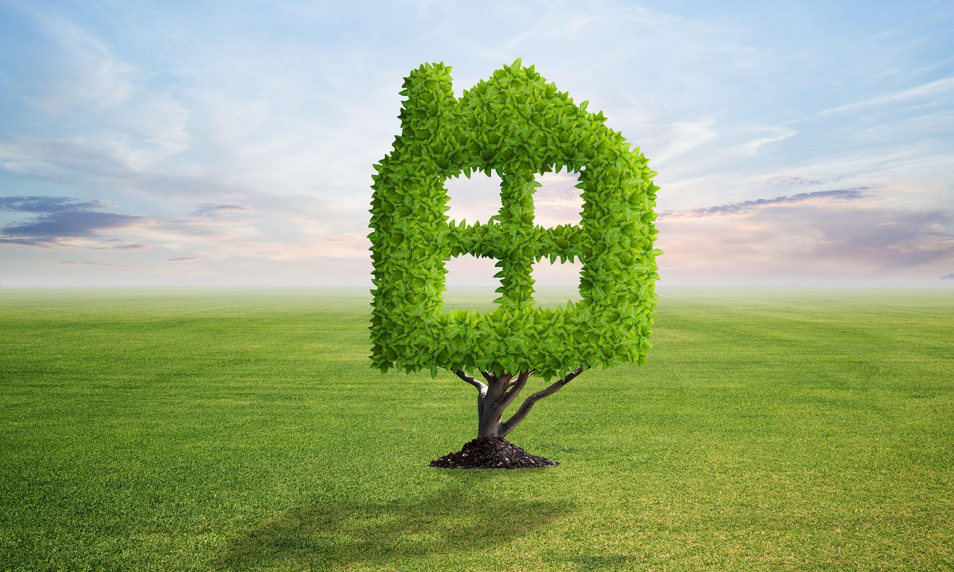 Green retrofit, ovvero, ristrutturare casa in modo ecologico